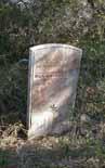 Daniel Tolson's Grave