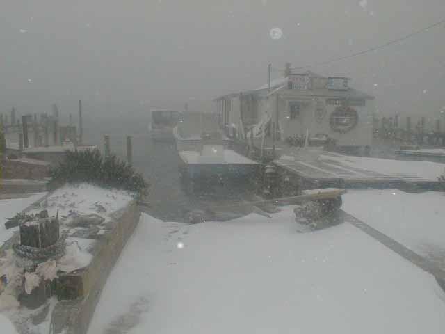 harbor snow