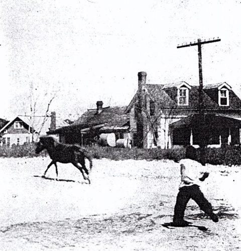 Ocracoke, 1956